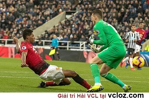 Video Highlight kết quả MU vs Newcastle trận đấu vòng 21 Premier League 2018/19 @ vcloz.com